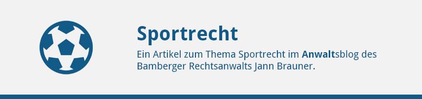 Der Spielervermittler Vertrag Darauf Sollten Sie Achten Jann Brauner